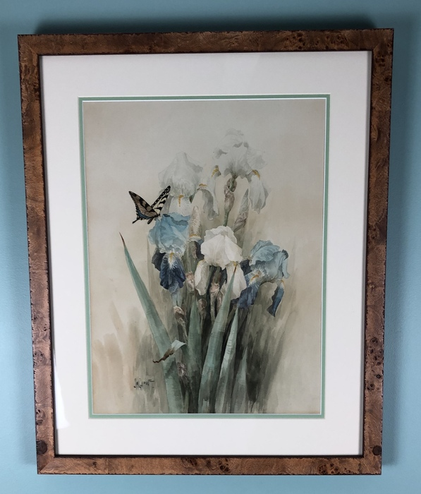 watercolor of blue and white irises with a butterfly